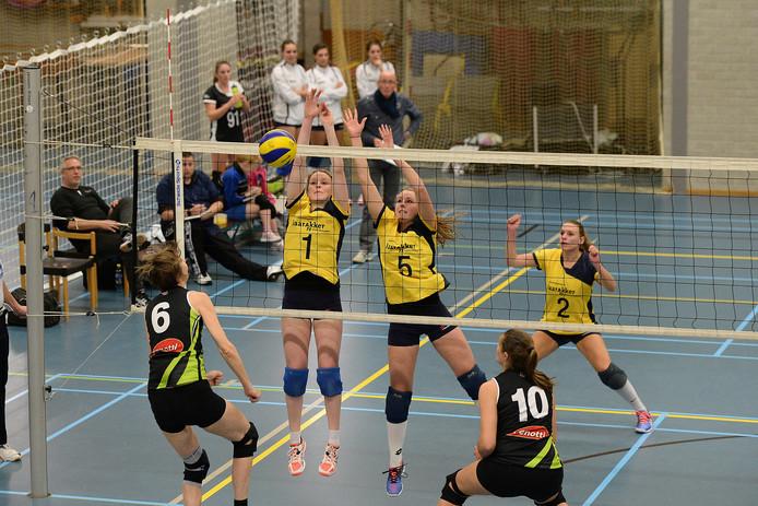 Archieffoto de volleybalsters van Havoc