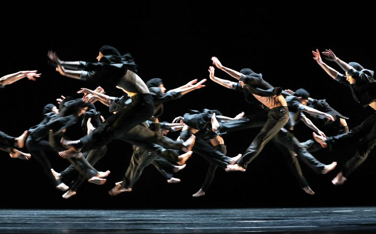 Het dansgezelschap Introdans. Beeld Hans Gerritsen
