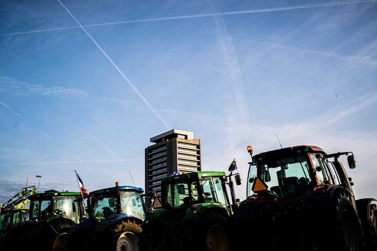 Boeren bij het provinciehuis in Den Bosch.  Beeld ANP
