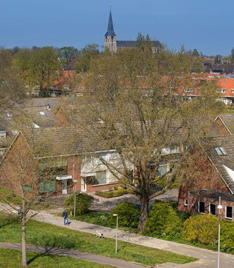 Bomenmeldpunt Kampen ziet over drie jaar uitgesmeerde bomenkap en herplant Elzenstraat niet zitten