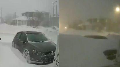 'Snowmageddon': auto's in één nacht volledig weggesneeuwd