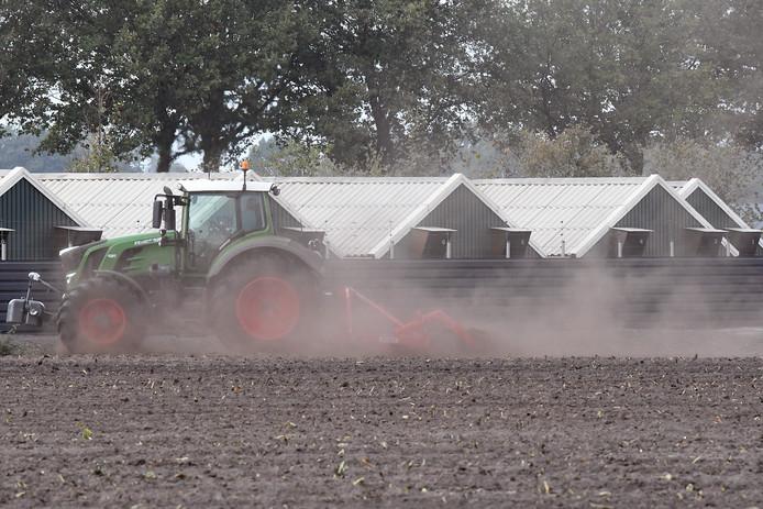 Brabantse boeren die door strengere stikstofregels plots een vergunning nodig hebben voor wat ze al doen, hoeven komende tijd niet te vrezen voor boetes.