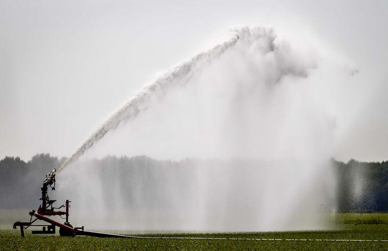 Landbouwgrond wordt beregend. In een aantal gebieden geldt vanwege de droogte een sproeiverbod.  Beeld ANP
