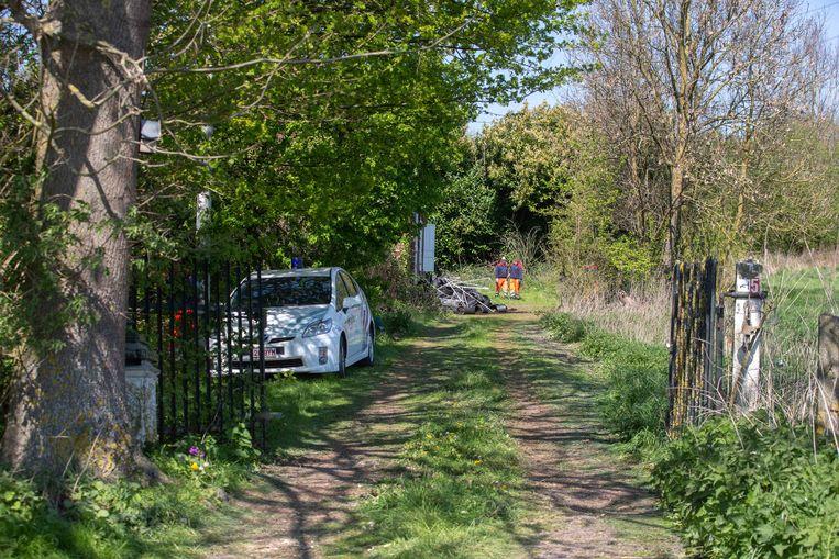 De lokale politie en gemeentearbeiders kwamen donderdag ter plaatse om de plantage te ontmantelen.
