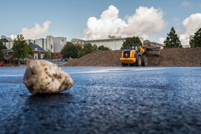 Eerste aanvoer suikerbieten bij Suikerunie in Stampersgat - Foto: Tonny Presser/Pix4Profs