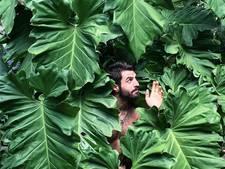 Nieuwe fototrend: mannen tonen hun obsessie met frisgroene kamerplanten