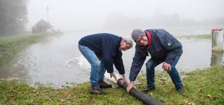 Bij de ijsmeesters in Bornerbroek, Albergen, Almelo en Westerhaar begint het alweer te kriebelen