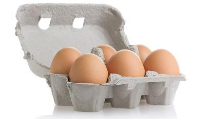 FAVV roept met pcb's besmette bio-eieren terug