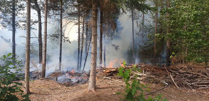 De brand in het bos bij zweefvliegveld Zweef Inn aan de Groesbeekseweg in Malden.