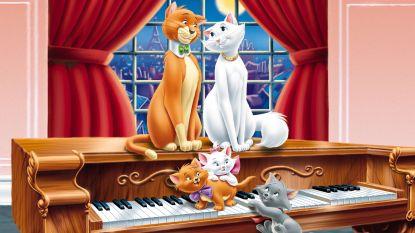 Disneyfilms hebben ook dit jaar weer invloed op kattennamen