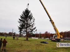 Sterren Stralen-boom bij Danspaleis komt uit Beckum