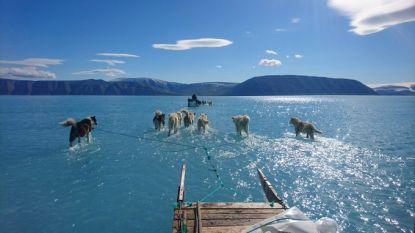 Sledehonden die over water lopen? Klimaatwetenschapper deelt foto van intrieste realiteit