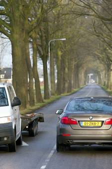 'Volksraadpleging over bomenkap Jagtlusterallee'