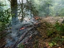 Vijf brandhaarden in Quirijnstokpark in Tilburg; brandweer met mattenkloppers in actie