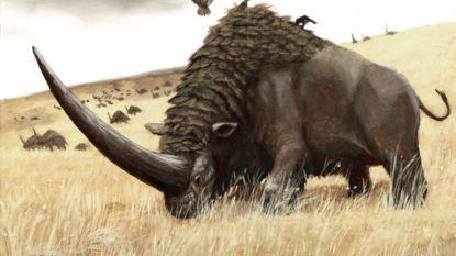 Siberische eenhoorn woog 3,8 ton