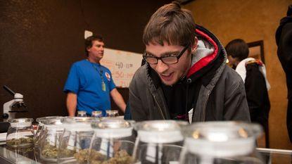 New York (iets) minder streng ten opzichte van cannabis
