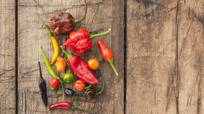 Dit is de allerheetste peper ter wereld