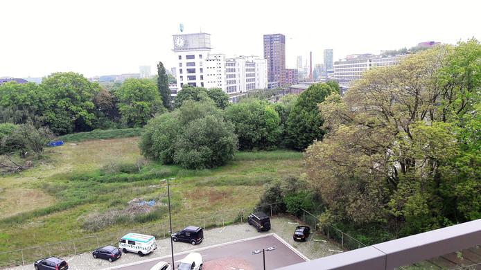 Het Gloeilampplantsoen, gezien vanaf het dak van gebouw TQ op Strijp-T in Eindhoven.