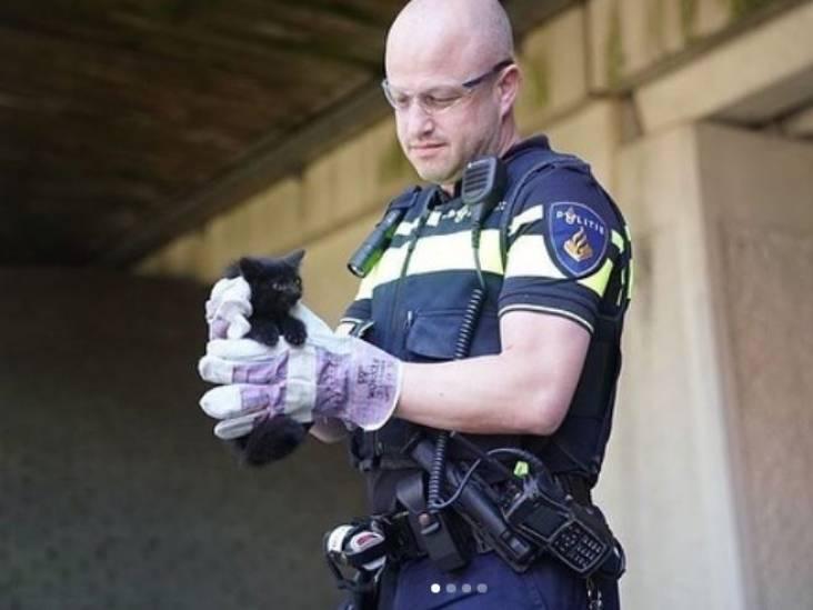 Zwarte kitten gered uit benarde situatie onder viaduct van A2 bij Maarheeze