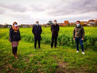 """Klimaatneutrale woonwijk Sint-Jansbergsesteenweg neemt één van de laatste open velden in Leuven in: """"Ruimte voor tweehonderdtal sociale woningen"""""""