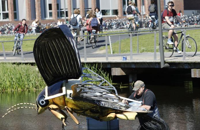 De Deense beeldhouwer Vagn Iversen werkt aan de gigantische waterkever, de Dytiscus marginalis, in een vijver op de campus van de Wageningen Universiteit.