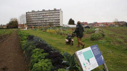 Heraanleg groenzone rond StadsAkker en Campus Sint-Jan