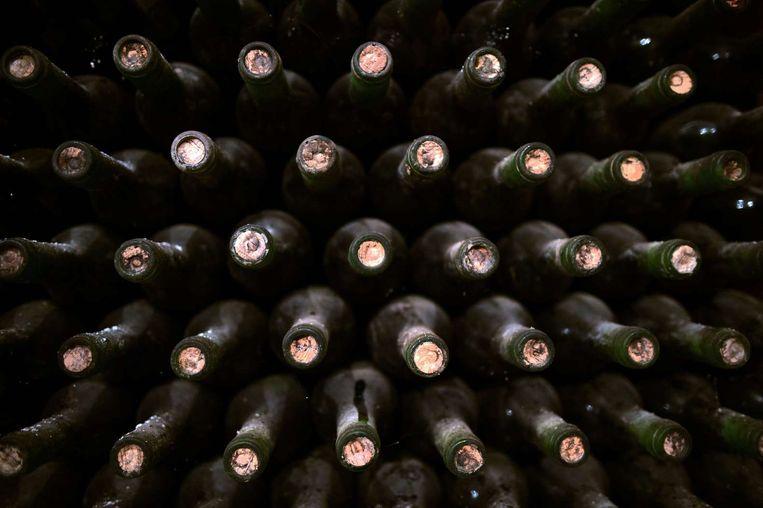 Luchtvaartmaatschappij investeert ruim 400 miljoen euro in wijn aan boord Beeld Dimitar Dilkoff