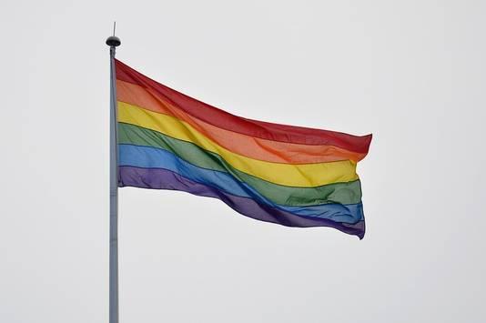 In het centrum van Londen wapperde de regenboogvlag.