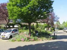 Dick en Gonnie toveren vuilstort om tot kleurrijke tuin: 'Gemeente doet niks, wij hebben vrije hand'