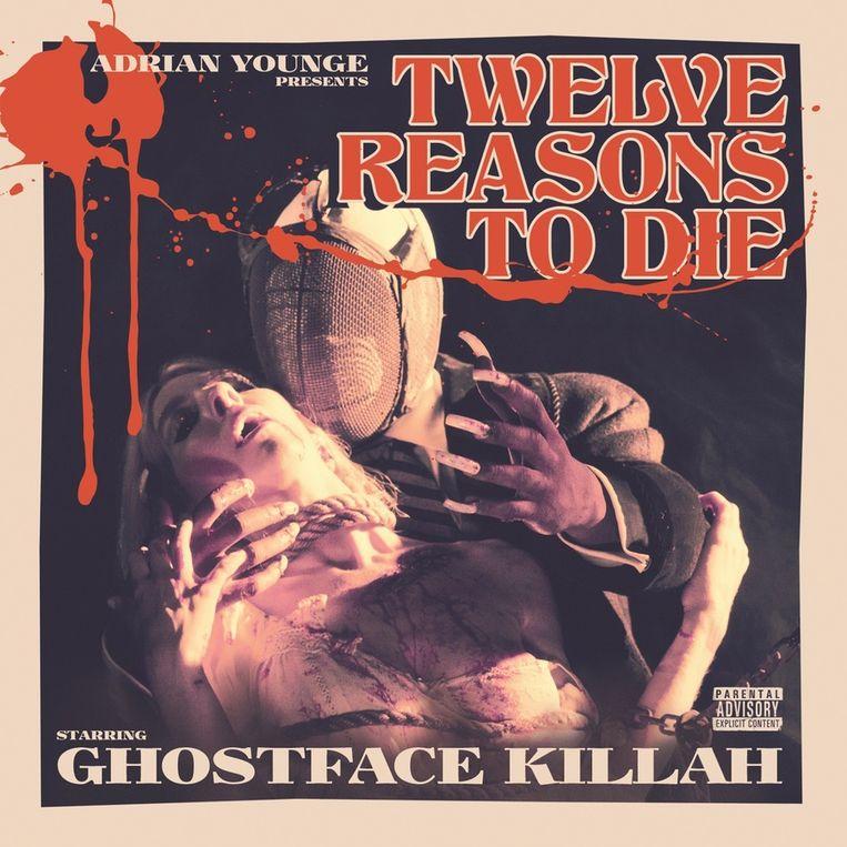 Albumhoes Twelve Reasons To Die Beeld -
