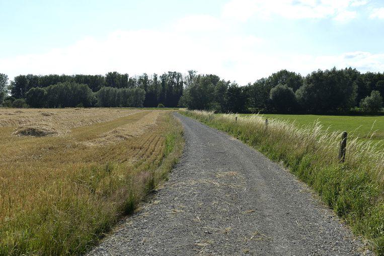 Het nieuwe pad richting het natuurgebied.
