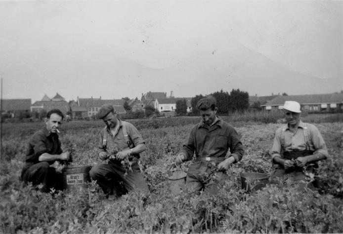Foto in de tuinen van het Elisabeth-ziekenhuis met helemaal rechts opa Van Vlimmeren.