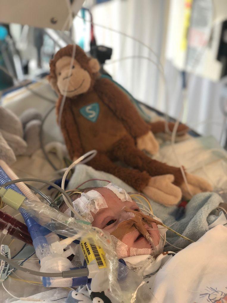 Baby Julius in het ziekenhuis.  Beeld Ouders Julius