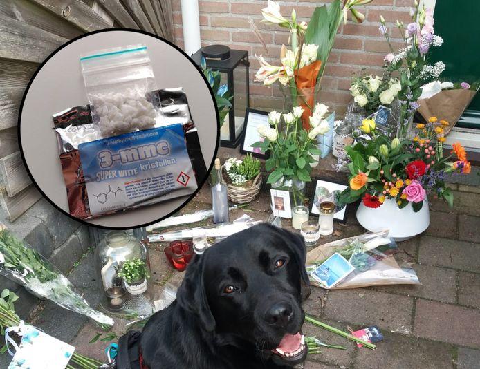 Hond Sem op de plek waar Gerjan na zijn overlijden met bloemen werd herdacht.