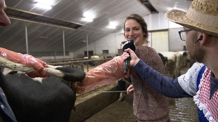 De grootste wens van Ingrid Ballemans uit Eindhoven? Het insemineren van een koe.