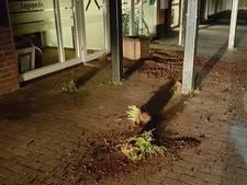 'Chaos' in Hengelo: jongeren trekken planten uit bakken