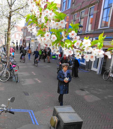 Delft vierde op lijst van beste binnenstad