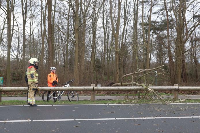 Mountainbikers waarschuwden het verkeer langs de Boxtelseweg bij Schijndel.