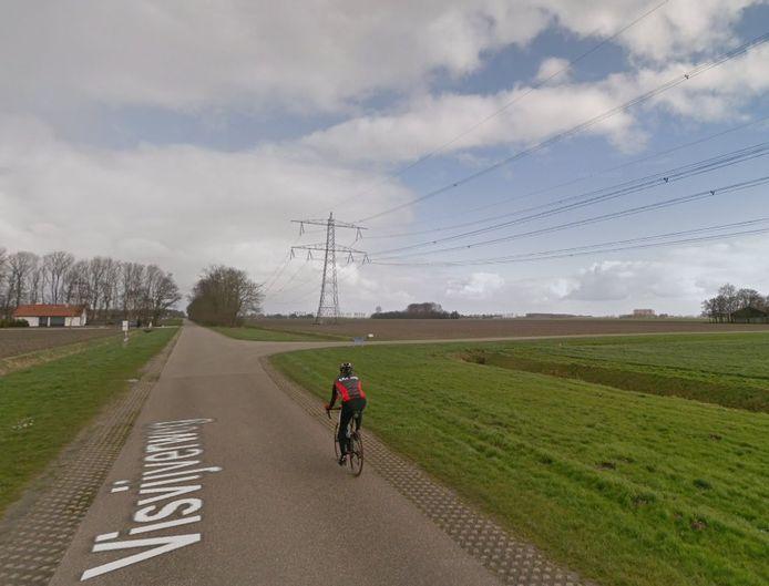 Hoogspanningsmasten aan de Visvijverweg bij Swifterbant.