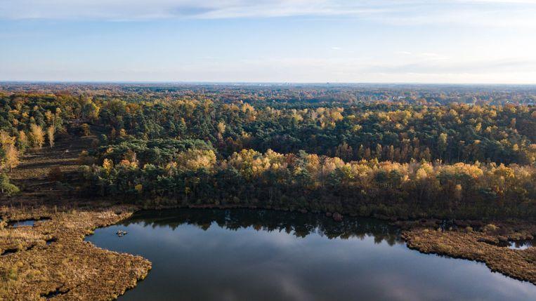 Herfst in Limburg.