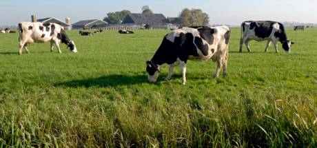 Geen opvolger op meer dan 16.000 boerderijen