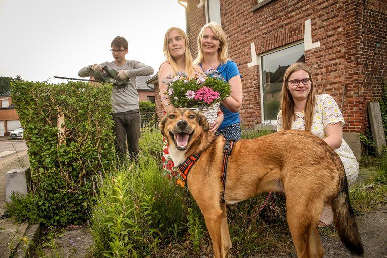 """Het vierde kind is er gekomen: Jens is intussen 14 en woont nog bij Anja, net als z'n zussen Lisa (23) en Laura (21) . Toen Jens vier maanden was, ging papa Johan weg. """"Ik heb hen zowat alleen grootgebracht. Maar ik ben trots op mezelf."""""""
