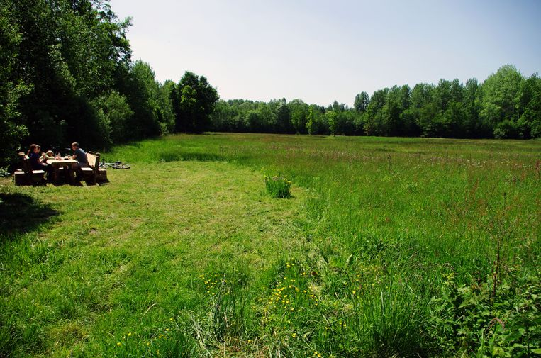 Onder meer het Silsombos in Erps-Kwerps maakt deel uit van de Groene Vallei.