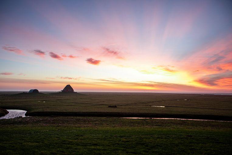 De zon komt op, op de hallig Nordstrandischmoor. Uitzicht op twee andere boerderijen vanuit de boerderij van familie Kruse.  Beeld Hilde Harshagen