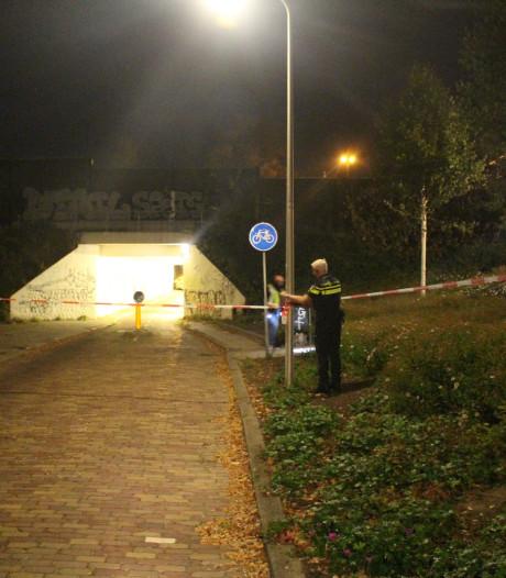Vrouw overvallen in 'muizentunneltje' in Hengelo