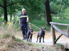 Honden weggelopen nadat baasje onwel werd, bos afgezet in Son en Breugel