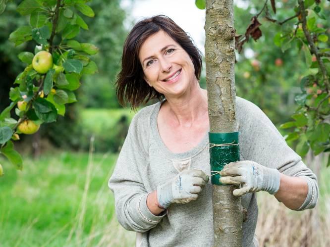 Klaar voor de kou: onze tuinexperte toont hoe je je tuin helemaal winterproof maakt