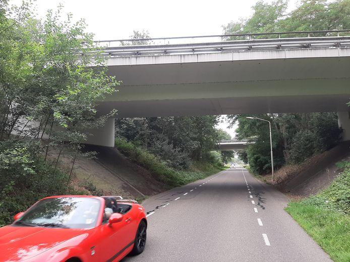 Ter hoogte van de twee viaducten onder de N267 door zal het fietspad van de Tuinbouwweg noodgedwongen vlak langs de rijweg komen te liggen. Er is domweg te weinig ruimte. Mogelijk wordt er een stukje schuin talud 'afgestoken'.