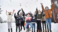 FOTOALBUM: Sneeuwval levert mooie beelden op