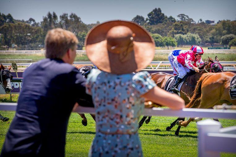 Koning Willem-Alexander en koningin Maxima volgen een paardenrace tijdens hun vijfdaags staatsbezoek aan Australië. Beeld ANP